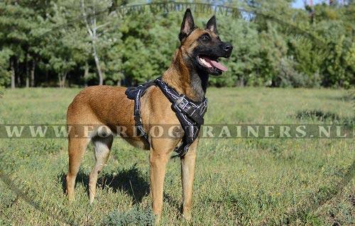 Design Voor Honden : Leren hondentuig voor malinois honden harnas grote hond u ac