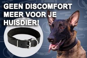 Honden Halsband van Leer
