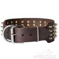 Brede Spikes Halsband